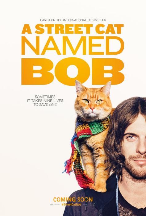 Bob the Cat در صحنه فیلم سینمایی یک گربه خیابانی به نام باب به همراه لوک تریداوی