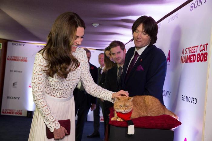 James Bowen در صحنه فیلم سینمایی یک گربه خیابانی به نام باب به همراه Bob the Cat