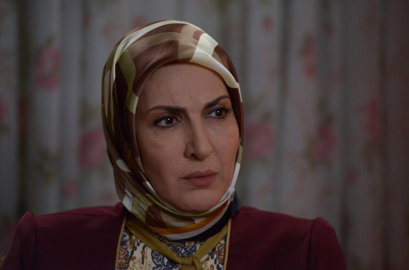 فاطمه گودرزی در سریال تلوزیونی نفس