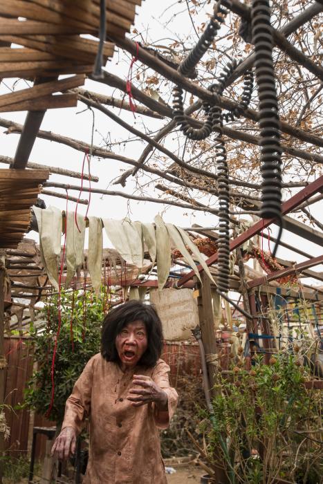 Cici Lau در صحنه سریال تلویزیونی ترس از مردگان متحرک
