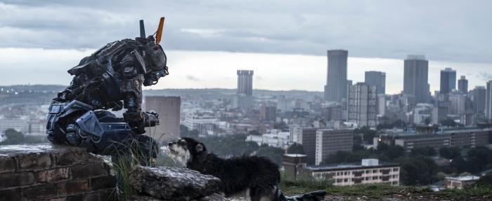 سیمون کینبرگ در صحنه فیلم سینمایی چپی