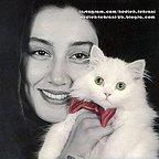 تصویری از هدیه تهرانی، بازیگر و طراح لباس سینما و تلویزیون در حال بازیگری سر صحنه یکی از آثارش