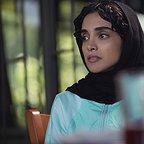 سریال تلویزیونی ممنوعه با حضور الهه حصاری