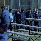 سریال تلویزیونی فرار از زندان با حضور آمائوری نولاسکو گاریدو، پتر استورماره و ونتورت میلر